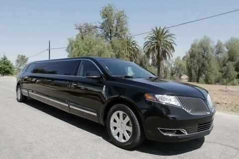 Fort Worth 20 Passenger Limo